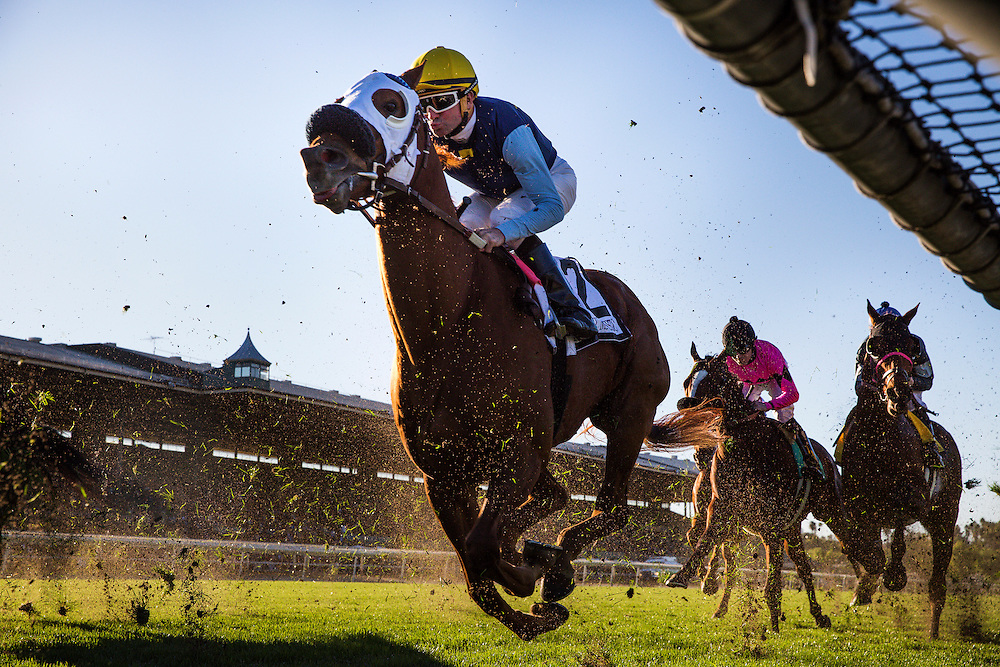 December 26, 2015: Perfectly Majestic and Kent Desourmeaux race in the Mathis Brothers Mile Stakes at Santa Anita Park, Arcadia CA. Evers/ESW/CSM