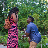 Cannady Engagement