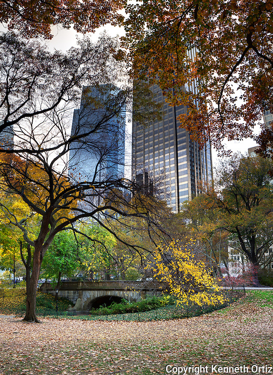 Central Park during the fall is a beautiful sight.  The trees begin to change color and the light has a different attitude.  These are one of the scenes I've come across many times and have wanted to photograph but never found the right moment to do so, until now.