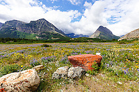 Landscape photography in the Many Glacier region of Glacier National Park<br /> <br /> &copy;2016, Sean Phillips<br /> http://www.RiverwoodPhotography.com