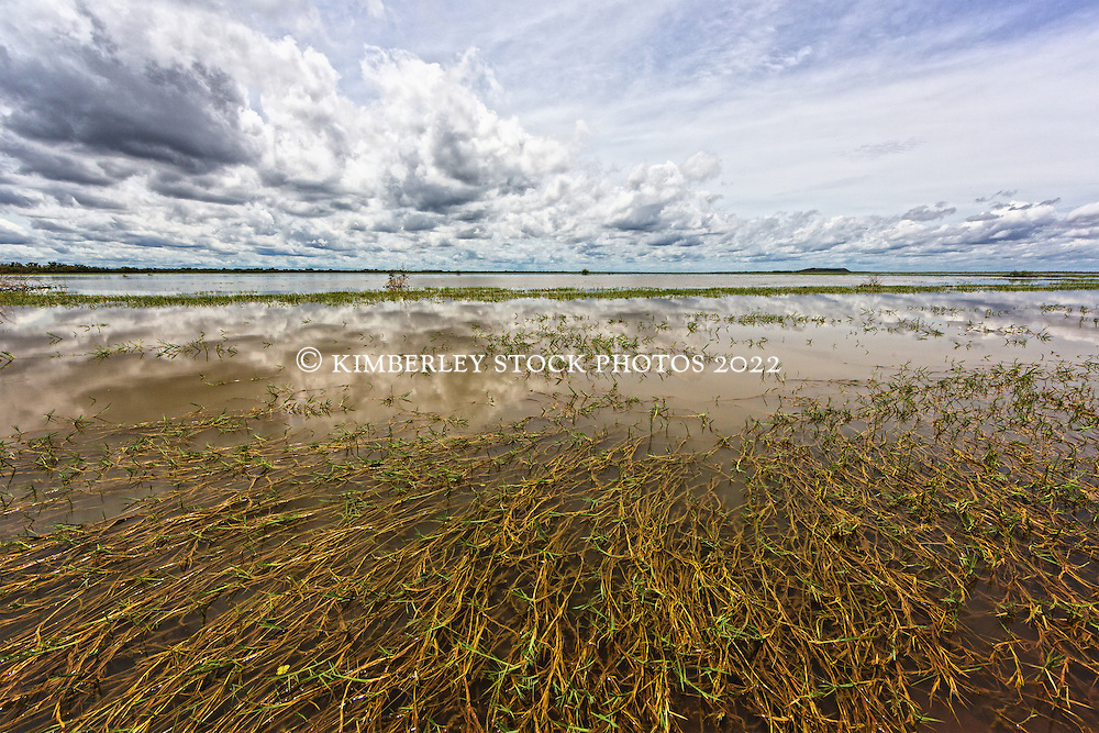Wet season clouds gather over Moulamen Swamp, on Liveringa Station in the West Kimberley,