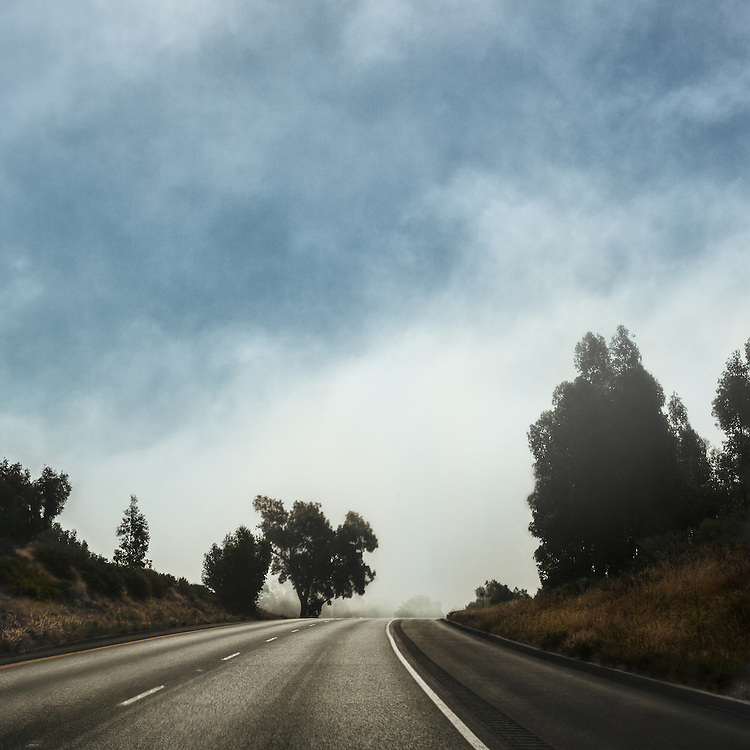 While driving on California's hwy 101 we hit fog.