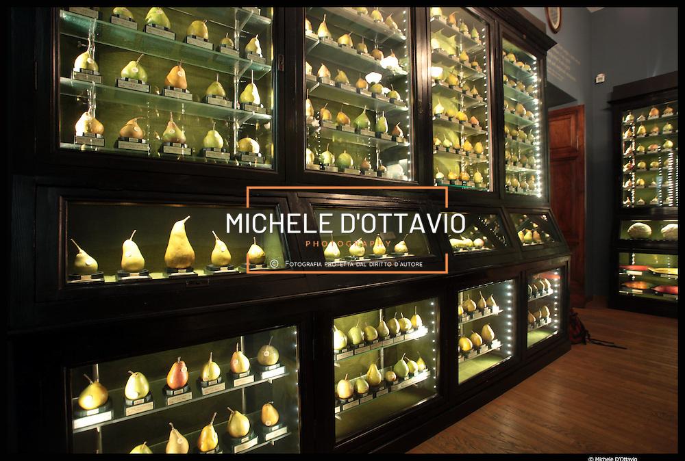 Museo della frutta raccoglie di più di mille pezzi realizzati da Francesco Guarnier-Valletti che raffigurano tutte le varietà di frutta nella nuova sede di via Pietro Giuria.