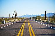 Organ Pipe Cactus National Monument, Lukeville, Arizona