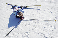 NEWS&GUIDE PHOTO / BRADLY J. BONER.Jackson's Gracie Lewis falls down in exhaustion at the finish line of the 6.5k skate race of the Wyoming State Nordic Meet on Friday at Trail Creek Ranch.
