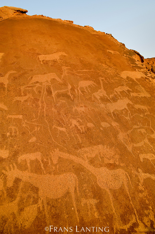Rock art engravings, Twyfelfontein World Heritage Site, Uibasen Conservancy, Damaraland, Namibia