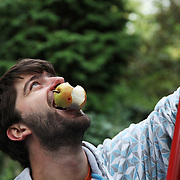 Man picking apples and pears as part of a harvesting group