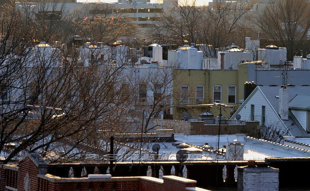 Roofs of Brooklyn, NYC.