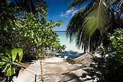 Beach in the Maldives.