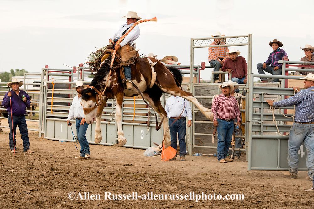 Will James Roundup, Ranch Rodeo, Ranch Bronc Riding, Logan Ayers, Hardin, Montana