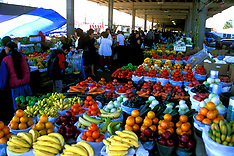Houston Farmers Market