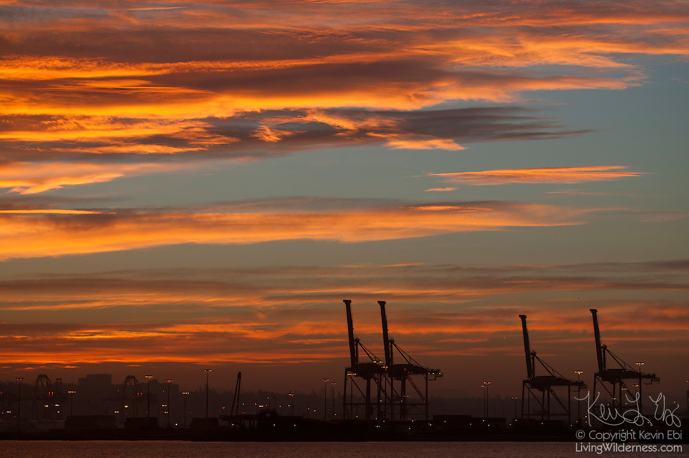 A vibrant winter sunrise colors the skies over the Port of Seattle shipping cranes in Seattle, Washington.