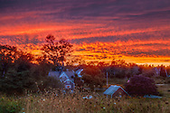 The sky burns orange as the sun decends at Fort Hill in Cape Cod National Seahore.