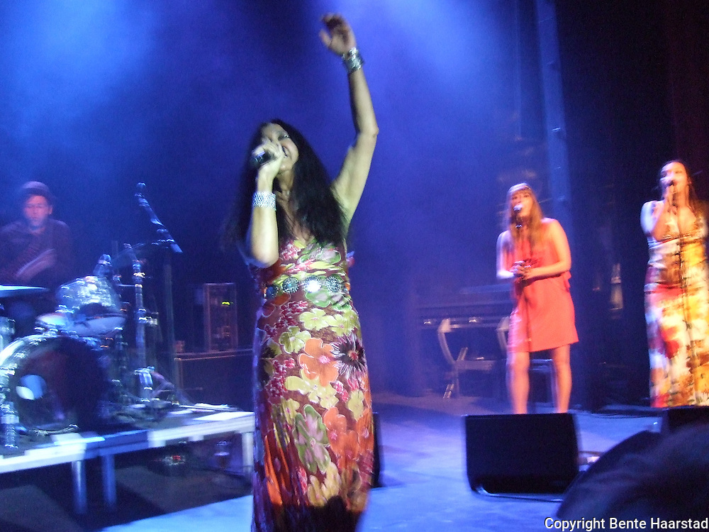 Annisette Koppel, the lead singer in the danish rock group Savage Rose.
