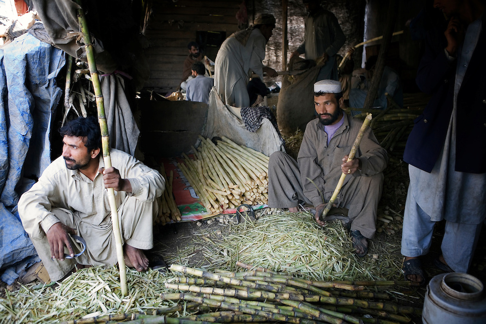 sugar industry of pakistan 1 sugar industry in pakistan œ problems, potentials by syed jamil ahmed rizvi, fcma synopsis the industry employs more than 100,000 labour force while more than 9 million people.