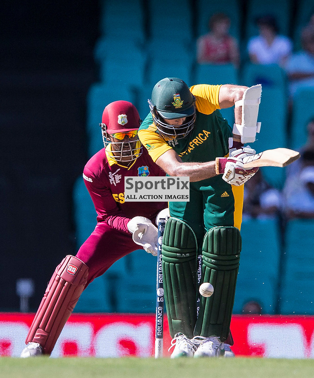 ICC Cricket World Cup 2015 Tournament Match, South Africa v West Indies, Sydney Cricket Ground; 27th February 2015<br /> South Africa&rsquo;s Hashim Amla is trapped LBW