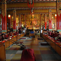 Monk prostrates at the Shechen Monastery in Kathmandu Nepal while monks are practicing.