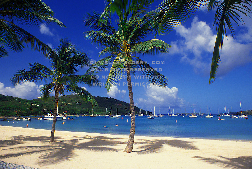 photos of tropical beaches in the caribbean pictures of