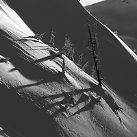 As i was shooting a snowboard jump (you can see the landing in the background) I noticed this group of trees making a nice shadow on the snow.
