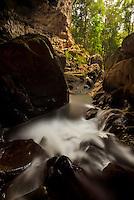 Rio frio cascades out the mouth of Rio Frio Cave in Belize's Mountain Pine Ridge