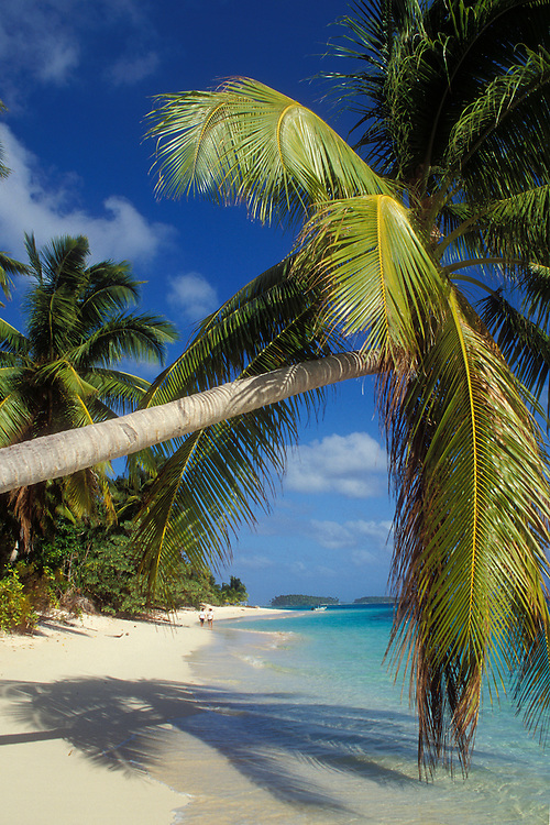 Calalin Island, with coconut palm trees and couple walking on beach; Majuro Atoll and lagoon, Marshall Islands, Micronesia..