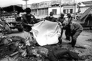 Vollunteers collect the bodies of victims of the  Tsunami that devastated the city of Banda Aceh. January 2005.