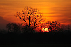 01 December 2016. Favi&egrave;res, France.<br /> Here comes the sun. Sunrise beyond a stand of trees.<br /> Photo; Charlie Varley/varleypix.com