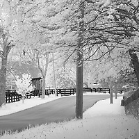Rural Kentucky road with stone wall on left and four plank fence on right.  Infrared (IR) photograph by fine art photographer Michael Kloth.