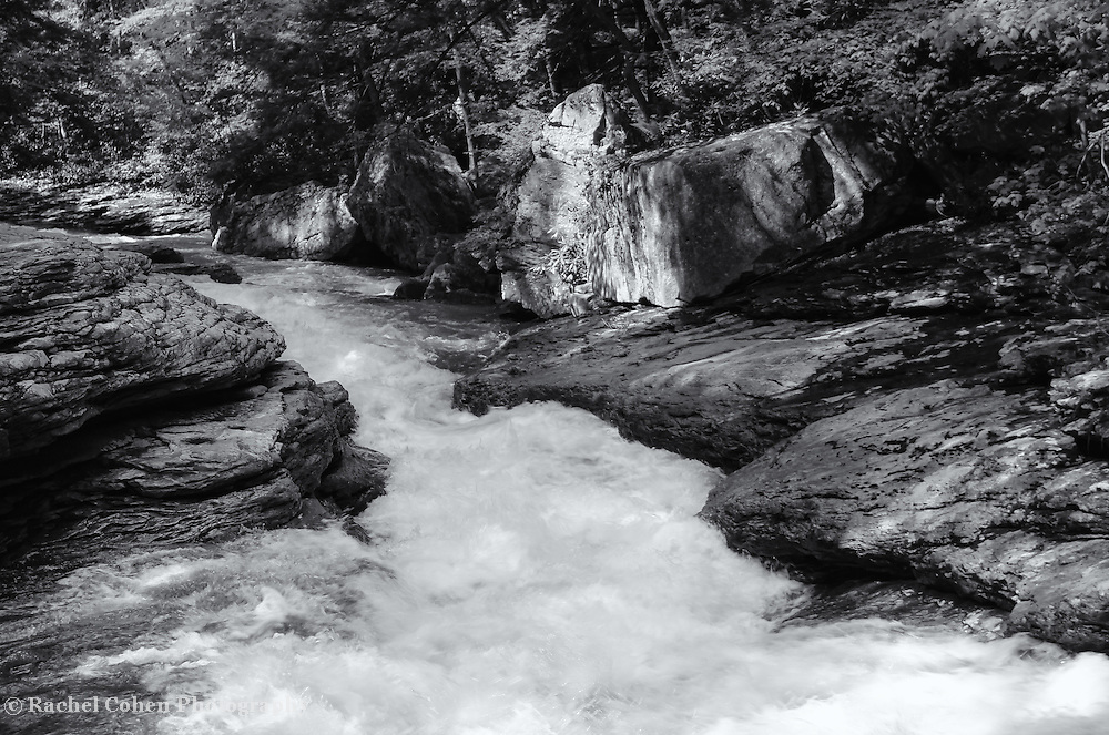 &quot;Flow of Life&quot;<br />