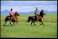 10: RING ROAD HORSES RUNNING