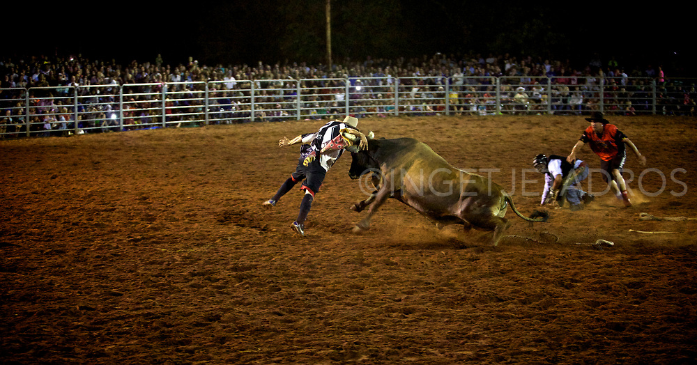 Broome's Rodeo is action packed with open barrels, poddy ride, steer ride, steer wrestling, saddle bronc and bull ride. Broome, WA