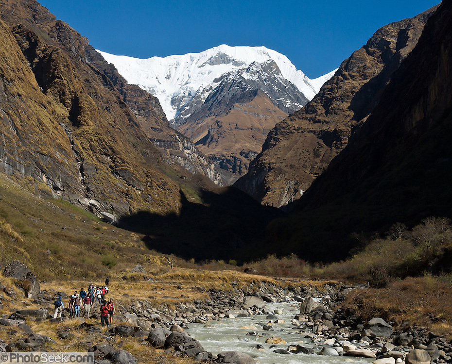 Trekkers explore the trail to Annapurna Sanctuary, along the Modi Khola river in the Annapurna Range, just upstream of Deurali, Nepal, at about 11,000 feet elevation. Straight ahead, the rocky Tent Peak (Tharpu Chuli) rises to 18,684 feet / 5695 meters, and behind it on the left is the snowy Singu Chuli (Fluted Peak; 21,328 feet / 6501 meters), and just right of it is Glacier Dome (Tare Kang; 23,192 feet / 7069 meters).