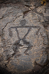 One of the 15,000 petroglyphs at Pu'u Loa in Hawaii Volcanoes National Park on the Big Island of Hawaii. It was the custom of early Hawaiians to bring the umbilical stump of a newborn to Pu'u and place it in one of the 7,000 cup-like holes carved into the lava. A circle would then be carved around a collection of holes to signify a family.