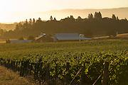 Benton-Lane Winery, Southern Willamette Valley, Oregon