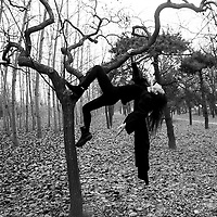 Beijing, Nov. 26,2016 : Chinese multi artist Han Bing embraces a tree on the outskirts of Beijing as a reminder of the importance of nature and life.<br /> Trees help fight climate change. Through the natural process of photosynthesis, trees absorb CO2 and other pollutant particulates, then store the carbon and emit pure oxygen.
