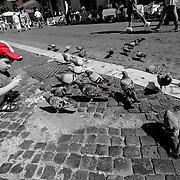Boy in cap feeding pigeons, Piazza Navona, Rome, Italy