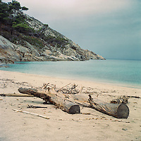 Logs on the beach of Cala Maestra, with Cala Santa Maria those are the only sandy beaches on the island. Montecristo is the most distant island of the Tuscan Arcipelago form the Italian coast. It's a cone of granite with rugge valleys and peaks, the highest, Monte Fortezza is 654 meters. It has been a wildlife reserve since 1971. Federico Scoppa/CAPTA