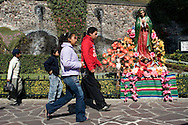 """Our Lady of Guadalupe, also called the Virgin of Guadalupe (Spanish: Nuestra Señora de Guadalupe or Virgen de Guadalupe) is a Roman Catholic icon depicting an apparition of the Virgin Mary. It is Mexico's most beloved religious and cultural image. Our Lady of Guadalupe is known in Mexico as """"La Virgen Morena"""". Our Lady of Guadalupe's feast day is celebrated on December 12, commemorating the account of her appearances to Juan Diego on the hill of Tepeyac near Mexico City. Feb. 23, 2008. (ivan gonzalez)."""
