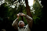 Pete Johnson takes photographs in Muir Woods National Monument, January 26, 2011.