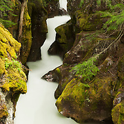 A long exposure blurs the water of Avalanche Creek, which carved the narrow Avalanche Gorge in Glacier Naitonal Park, Montana.