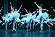 Paris Opera Ballet Australian Premiere, Sydney, Australia - 15 June 2007  Pics Paul Lovelace .Regarded by many to be one of the leading dance companies in the world, the Paris Opera Ballet visits Australia for the first time, & performs versions of Swan Lake & Jewels..[ Total 41 Pics].[ Non Exclusive] . An instant sale option is available where a price can be agreed on image useage size. Please contact me if this option is preferred.