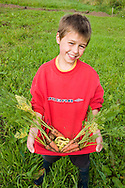Boy in an allotment with vegetables he has grown, Carnoustie, Scotland