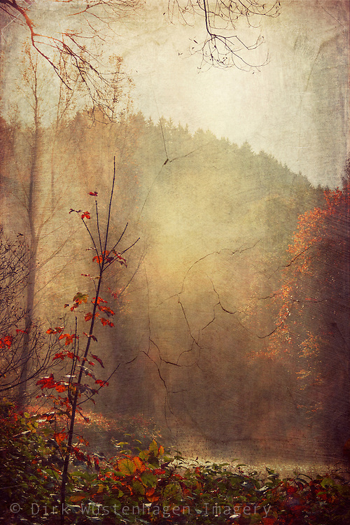 Sunlight and morning fog near river Wupper in autumn. Texturized photograph<br /> <br /> Prints:http://society6.com/DirkWuestenhagenImagery/vintage-fall-scenery_Print