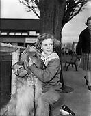 1960-17/03 Dog Show