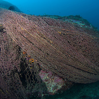 Discarded trawlers' nets smothering the reef.