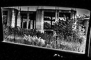 September 2015. Haikidiki. half-constructed and abandoned building snapshot through the car's window during our travel to Mount Athos.