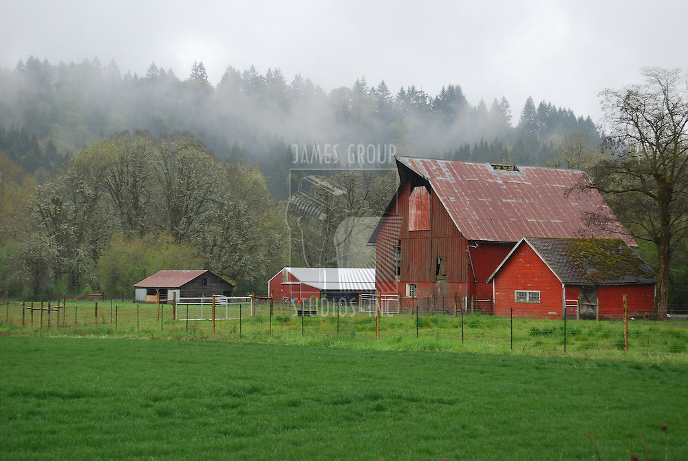 Mist rolling over the hills onto a farm with three red barns overlooking a field of green