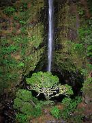 Image of a waterfall in Maui, Hawaii, Hawaiian Islands