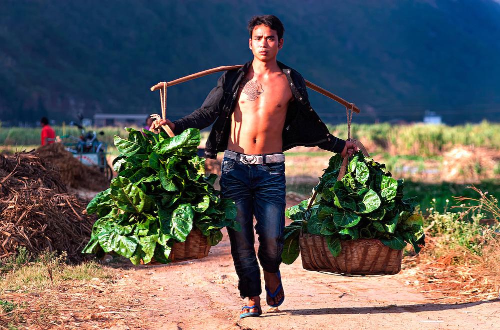 A farmer brings home his harvest in Yunnan, China.