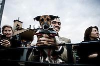 Roma - 07 Novembre 2010.Derby equitazione all' Ippodromo di Capannelle.Supporter conilsuo cane.foto:Stefano Meluni